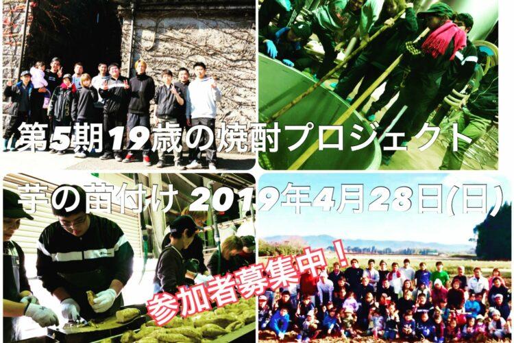 第5期19歳の焼酎プロジェクト 芋の苗付け編