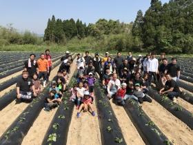 第4期19歳の焼酎プロジェクト 芋の苗付け