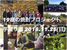 第5期19歳の焼酎プロジェクト 芋掘り・仕込み