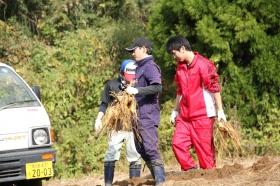 19歳の焼酎プロジェクト完結編 ~芋の苗付け~ そして後輩たちへ